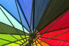 raindrops on my umbrella (ros-marie) Tags: fs170611 vattendroppar fotosondag