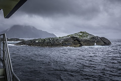 Seals on a Rock (- Jan van Dijk -) Tags: rock sea zee seals nature rainy foggy mist misty cloudy bewolkt fursealcolony furseal fiordland southland newzealand tasmansea regen rain doubtfulsound zeehond explored