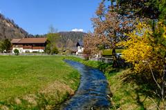 Der Mühlbach