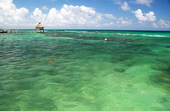 Verde (h.m1505) Tags: mexico quintana roo maya riviera transparencia verde caribe muelle