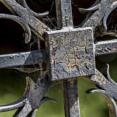 beauty's never skin deep (MyArtistSoul) Tags: santapaula ca wrought iron gate rusty cracked aged weathered paint closeup pattern symmetry urban square 5646