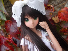 Calla of the Red Leaves (Missy_Crane) Tags: smart doll ebony danny choo lolita cute kawaii musedoll autumn bjd 13 vinyl calla