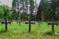 [URBEX] Insane Cemetery (pixroads) Tags: urbex belgique belgium cimetière cemetery insane fou psy cross grave tombe canon canon7d abandoned abandonedplace teamlili doraurbex