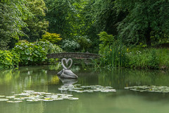 Romantic swans (Tony Buckley) Tags: pond lake swans statue statues lilies lilypond garden nickmason canon wiltshire canon5d
