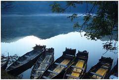 Cobalt's Voodoo (MaheshChopde) Tags: reflection lake land landscape boats boat sun daylight mist dusk dawn winters morning mountains misty green float bhimtal india uttrakhand