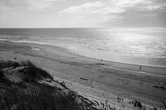 (Paysage du temps) Tags: 2017 20170202 fp4 film ilford leicam6 summicron50mm france gironde hourtin dune plage beach sable sand ocean