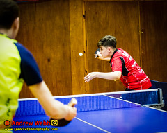 BATTS1706JSSb -355-103 (Sprocket Photography) Tags: batts normanboothcentre oldharlow harlow essex tabletennis sports juniors etta youthsports pingpong tournament bat ball jackpetcheyfoundation londontabletennisacademy
