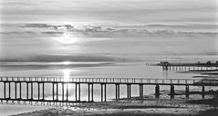 West Marin Fog ... (sswj) Tags: fog landscape tomalesbay inverness westmarin marincounty northerncalifornia pacificcoast california blackandwhite composition reflection fogfilteredlight leica dl4 bw monochrome availablelight existinglight scottjohnson mood docks