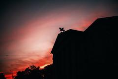 pegasus (ewitsoe) Tags: pegasus sunset poznan poland ewitsoe erikwitsoe canon architecure silhouette sun bloody red summer intense city summertime warm polska operhouse dusk statue urban cityscape