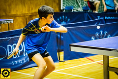 BATTS1706JSSb -372-2-109 (Sprocket Photography) Tags: batts normanboothcentre oldharlow harlow essex tabletennis sports juniors etta youthsports pingpong tournament bat ball jackpetcheyfoundation