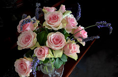 Roses (Caulker) Tags: roses lavender bouquet 08072017