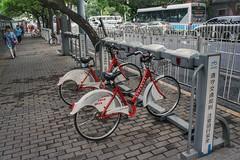 打不倒我的 X 腳踏車 Beijing (衛大俠) Tags: bike 腳踏車 北京 beijing