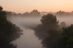Nebelschwaden (Lilongwe2007) Tags: haseldorfer marsch deutschland schleswig holstein bodennebel sonnenaufgang landschaft natur wasser