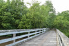 DSC_0194.jpg (turn off your computer and go outside) Tags: 2017 albanywildlifearea greencounty june sugarriverstatetrail wi wisconsin latespring nature niceweather outdoors partlycloudy