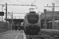 grosseto marzo 2017 #6 (train_spotting) Tags: grosseto trenitalia divisionepasseggeri frecciabianca ic510 intercity510 e402b172 e402b1727ti nikond7100