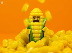 Juggling Corn (jezbags) Tags: lego legos toys toy minifigure minifigures macro macrophotography macrodreams macrolego canon60d canon 60d 100mm closeup upclose corn cornguy orange yellow juggling juggle
