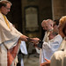 "Ordination of Priests 2017 • <a style=""font-size:0.8em;"" href=""http://www.flickr.com/photos/23896953@N07/35503106742/"" target=""_blank"">View on Flickr</a>"