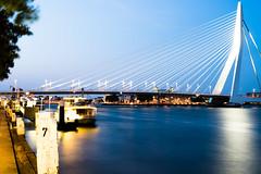 De Erasmusbrug (Cappucc:no) Tags: nederland rotterdam erasmusbrug bridge night water long exposure boat architecture