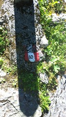 segnale del sentiero (Nienteal) Tags: motta passeggiata segnale sentiero perdersi sassi bosco