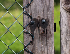 28/52 It's the little things ..... (FocusPocus Photography) Tags: zaun fence gesicht face lächeln smile