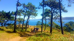 Caminhada nas ilhas Cíes (vmribeiro.net) Tags: ilhas cíes espanha caminhada trekking sony z1 sonyz1 vigo galicia galiza spain espana españa