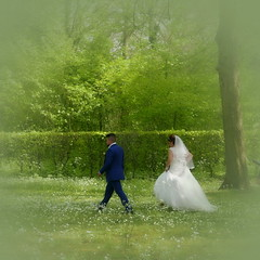 """I will follow him"" (louise peters) Tags: couple brideandgroom bruidspaar wedding trouwerij huwelijk marriage weddingdress bruidsreportage park sluier weddingveil landgoedbeeckestijn"