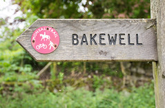 Day28 (branestawm2002) Tags: 30dayswild 2017 wildlife campaign british nature green ecology environment outdoors bakewell sign directions wood web map explore trail path peak district derbyshire dales