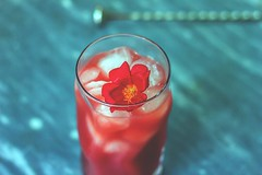 Sex on the Beach cocktail ricetta, cocktail estivo leggero e profumato, fiore (Wine Dharma) Tags: sex sexonthebeach nakednick nn nick nakedbartender nakedman cocktail cocktails cocktailrecipe cocktailestivi cibo cocktailallafrutta cocktailricetta cocktailconvodka vodka vermut vermutrosso vigneti vodkaporn vodkacocktail vodkaelime vodkadrink ananas pinaapple pina cranberry con fiore bartender bar ricetta recipe ricette restaurant rum refreshing relaxation refreshment food foodporn foodphotography foodpics focus foodie frutta fresh foodandwine winedharma barman glass glassofvodka russian boy toyboy cordoba handsome model malemodel derek nakedchef muscles muscle marble ice ghiaccio bibite drink summercocktails summer summerdrinks mirtillorosso cocktailconcranberry