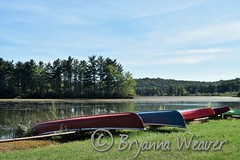 Summer Daze (Bryanna_Weaver) Tags: shawneestatepark canoes bedfordcountypa pennsylvania shawnee statepark pa schellsburgpa lakescapes lake summer island
