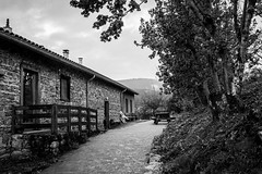 IMG_1606 (Marc Lecocq) Tags: gîte campagne nature