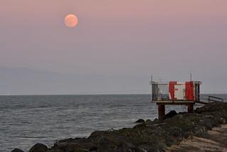 Full Moon Rising|Foster City, California