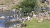 Maletsunyane river (Hans van der Boom) Tags: holiday vacation southafrica lesotho zuidafrika semonkong maseru maletsunyane river people donkey crossing work women water lso