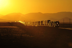 BNSF near Winslow, Arizona. July 2017 (Neecie14) Tags: rollinghills trainengines nikonphotography nikon outdoorphotography mountains traintracks glowing sunsets trains bnsf
