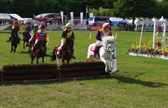 The Shetland Pony Grand Nation at The Kent County Show....archiving (favmark1) Tags: saturday 2017 detling kentcountyshow