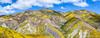 Panoramic view of flower covered hills below Mckittrick Summit, (Gary Rides Bikes) Tags: california carrizoplain carrizoplainnationalmonument mckittricksummit northamerica sanluisobispocounty springtime temblorrange usa beautyinnature blue cloudsky cumuluscloud cumulushumilis footpath goldcolored greencolor hill idyllic inbloom landscape mountain mountainrange mountainridge nature nopeople orangecolor panoramic plain purple remote scenicsnature vibrantcolor violet yellow