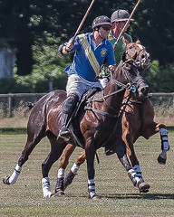 Polo ride off (DaveMac photography) Tags: polo newforest england newforestpoloclub sunday sunnyafternoon ponies equestrian equine mallets events pologame outdoors