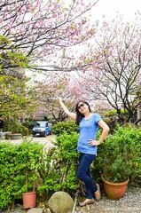 DSC_4407 (Frankie Tseng (法蘭基)) Tags: yms taipei taiwan flower flowers nikon cherryblossoms summer spring 2017 abstract blur bw bwphotography blackwhite yangmingshan 台北 櫻花 陽明山 台灣 抽象