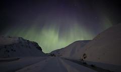 Iceland. (richard.mcmanus.) Tags: iceland vik mountains northernlights auroraborealis night winter mcmanus landscape