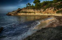 Cala Pepo (candi...) Tags: cala calapepo playa mar rocas escalera arboles agua naturaleza nature airelibre paisaje sonya77 arena algas olas