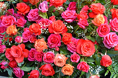 Rose festival (misi212) Tags: giant rose bouquet festival stage