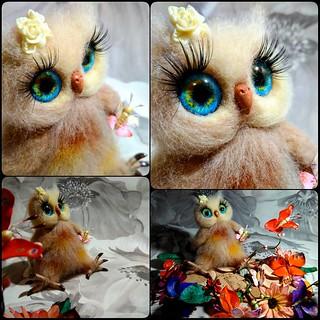 Owl Laossa