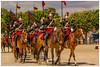 Garde Républicaine - Carrousel des lances (Stéphanie Deniaux - Photos) Tags: garderépublicaine gendarmerie cheval horse equitation caserne paris france