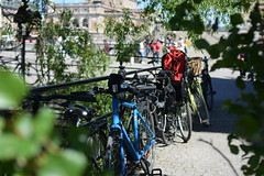 I drove with my bike today. (lucasual) Tags: stockholm sun city bikes bicycles bridge leaves tree tourists