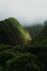 sotto voce (Super G) Tags: sony005 wailuku hawaii iaovalley mountains fog light hope tropical maui hike