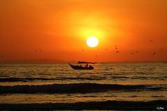Départ des pêcheurs (mars-chri) Tags: coucherdesoleil atlantique costarica fabuleuse