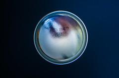 Bottom-Up-(Macro-Mondays-10-July-2017) (+Pattycake+) Tags: 10july2017 macro macromondays bottomup mm metal aerosolcan can container silver shiny darkbackground blue lumix dmcgm1 primelens 25mm