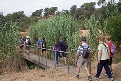 08072017-_POU7972 (Salva Pou Fotos) Tags: 2017 ajuntament fradera grupsenderista observatorifauna pont aiguamolls barberàdelvallès caminada pou