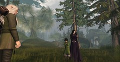 The ranger returns. (Mordred Avindar) Tags: elves lady man boy ranger elf travel gown tunic lotr landscape watterfall tree people traveler day kin family noldar child tolkien elven cute fantasy secondlife sl moody background photogrophy virtualworld childhood dúnedain elffriend medieval vanyar noldor teleri sindar eldar light sparkle lord rings innocent brother sister nephew mother son uncle loki fate tweenster human hobbiton second life old young sky grass earth stone who question mystery forest woods daylight sun emotion annoyed roleplay