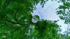 Aare Planet (Ukelens) Tags: ukelens schweiz swiss switzerland suisse svizzera lightroom light lights licht lichter lighteffects lighteffect lichteffekt lichteffekte schatten shadow kleiner planet littleplanet baum bäume forest forests nature natur