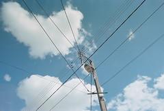 B011445-R1-26-26A Untitled (hadrien.du) Tags: canon a1 film analog kodak portra160 blue sky 35mm wire light